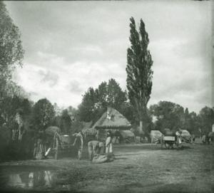 51. 1915. Полевой госпиталь 46-й пехотной дивизии. Лето