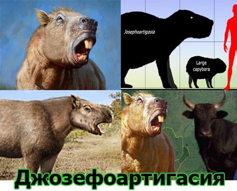 Самые большие животные в мире, существовавшие на земле (фото 6)