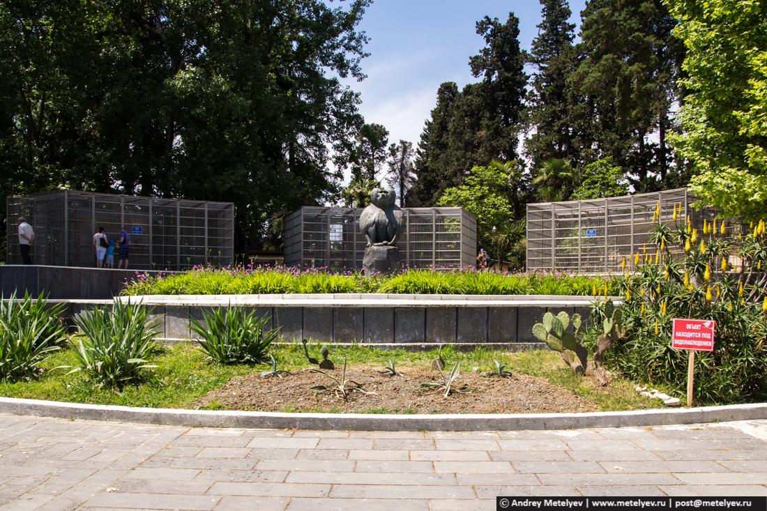 Памятник бабуину