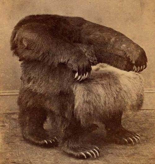 Президенское кресло Джонсона из медведя гризли,музей Белого дома,1865 год