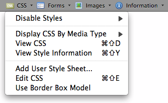 Web Developer screenshot
