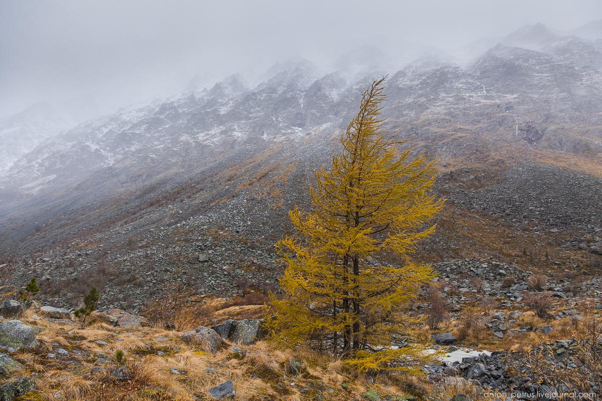 Горный Алтай осенью