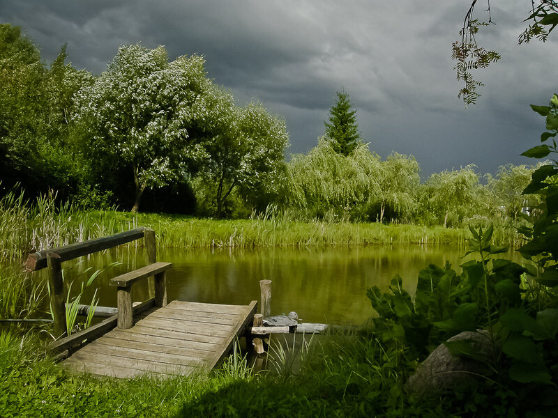 У пруда перед грозой...