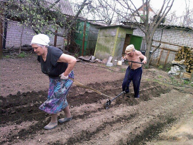 Сельский труд