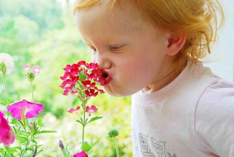 28. Помните о правильных ароматах Если вам очень хочется чего-нибудь сладенького, а на часах уже сли