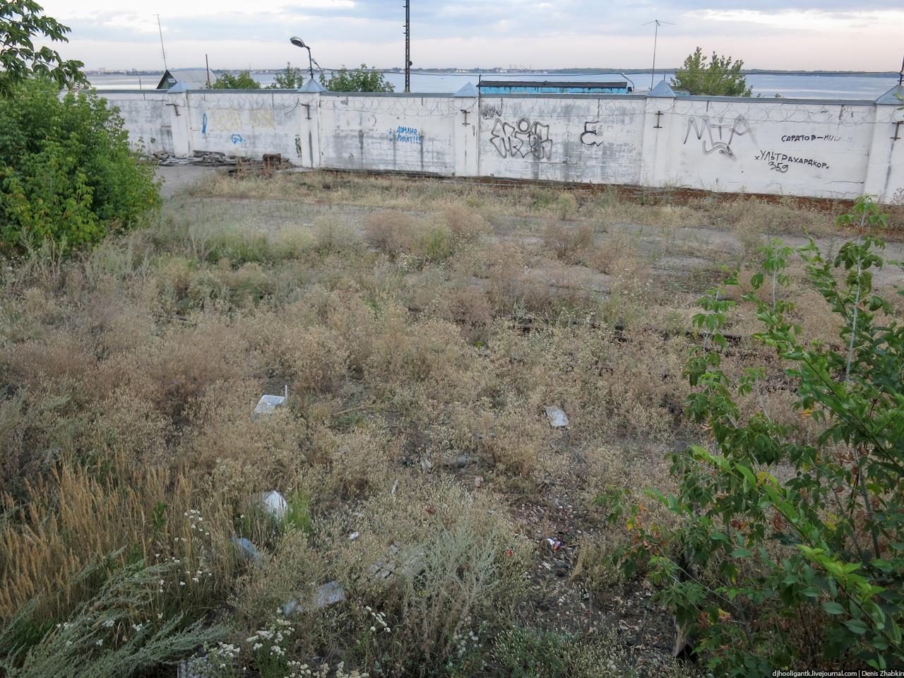Рассказ в саду за гаражами фото 735-894