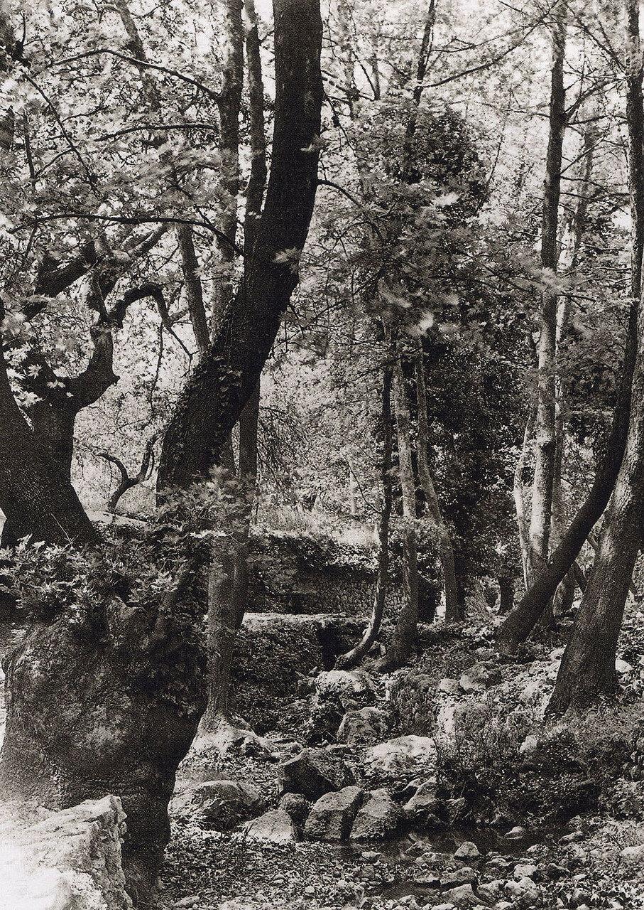 1927. Крит, Нелли. Апокороноу