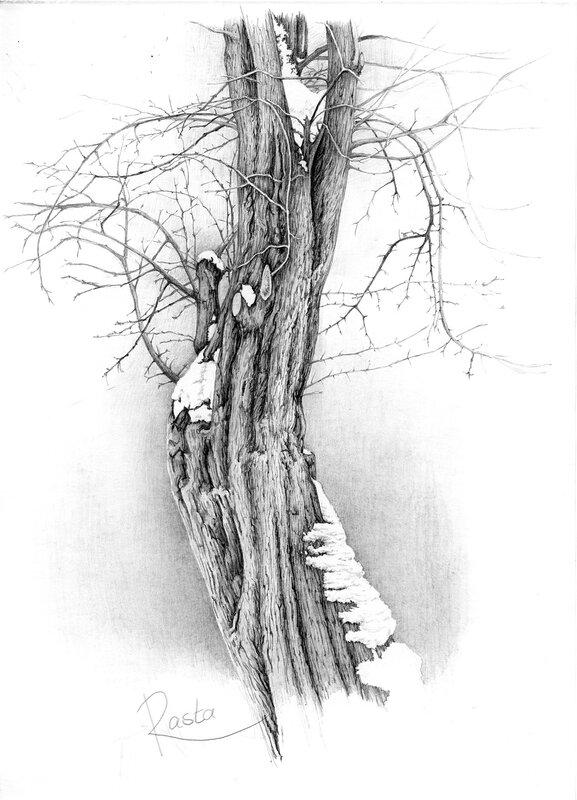 ... : рисунки простым карандашом природа: mila5.blogspot.com/2012/09/blog-post_7991.html