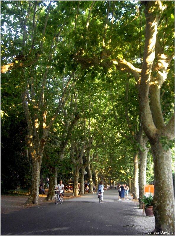 Viareggio-2006 (5)