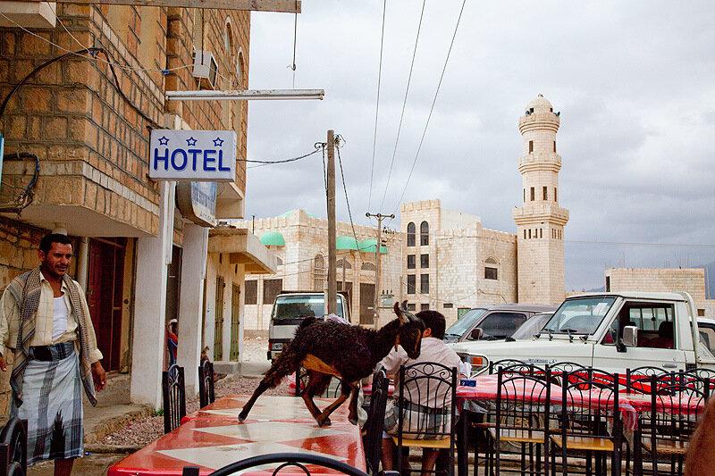 Сокотра - перлина Ємену: столиця Хадібо