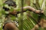 Выжить в джунглях Амазонки.jpg