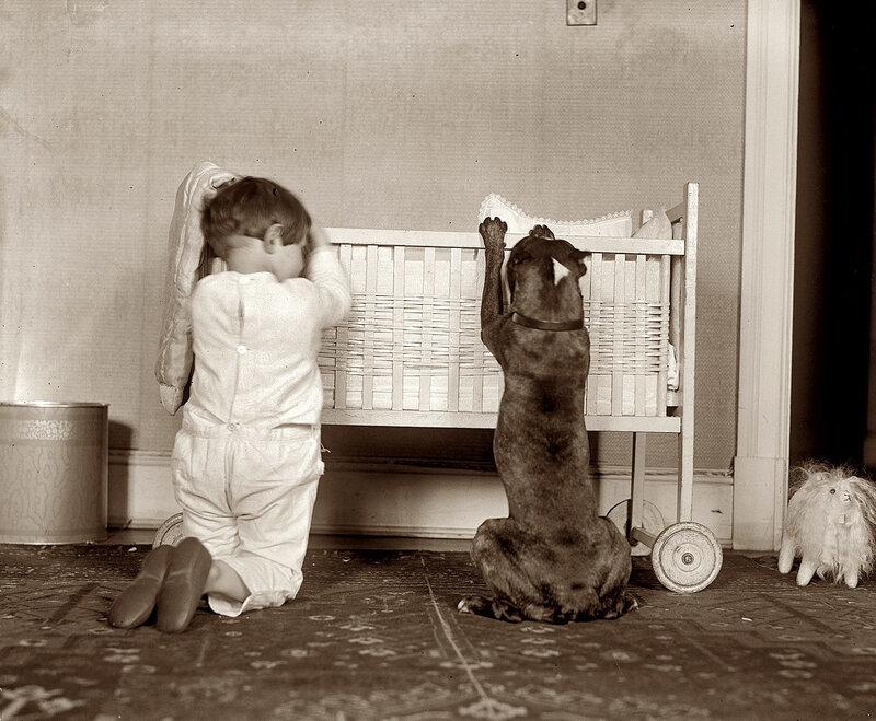 портрет с собакой,1920