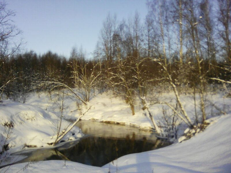 Река Берёза.