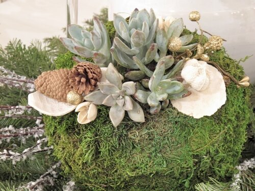 декорирование растениями дизайн декор своими руками