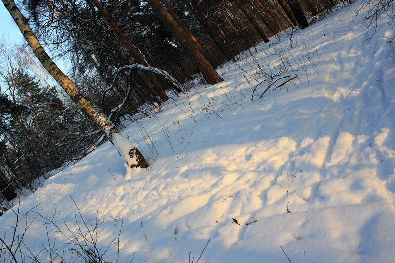 Солнце на снегу