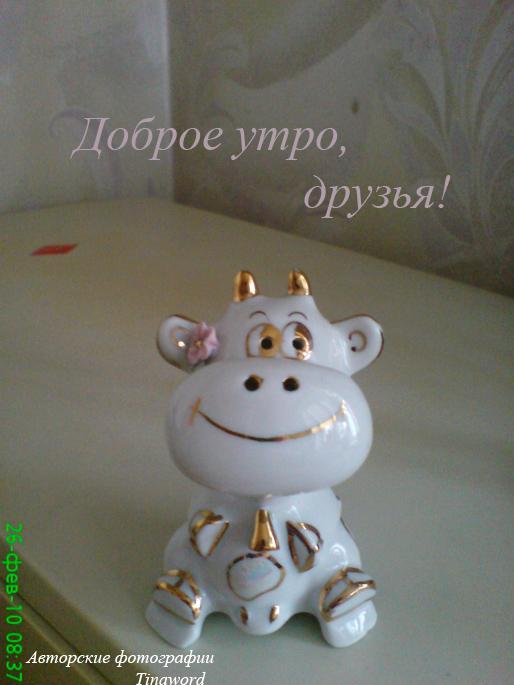 теленок.jpg