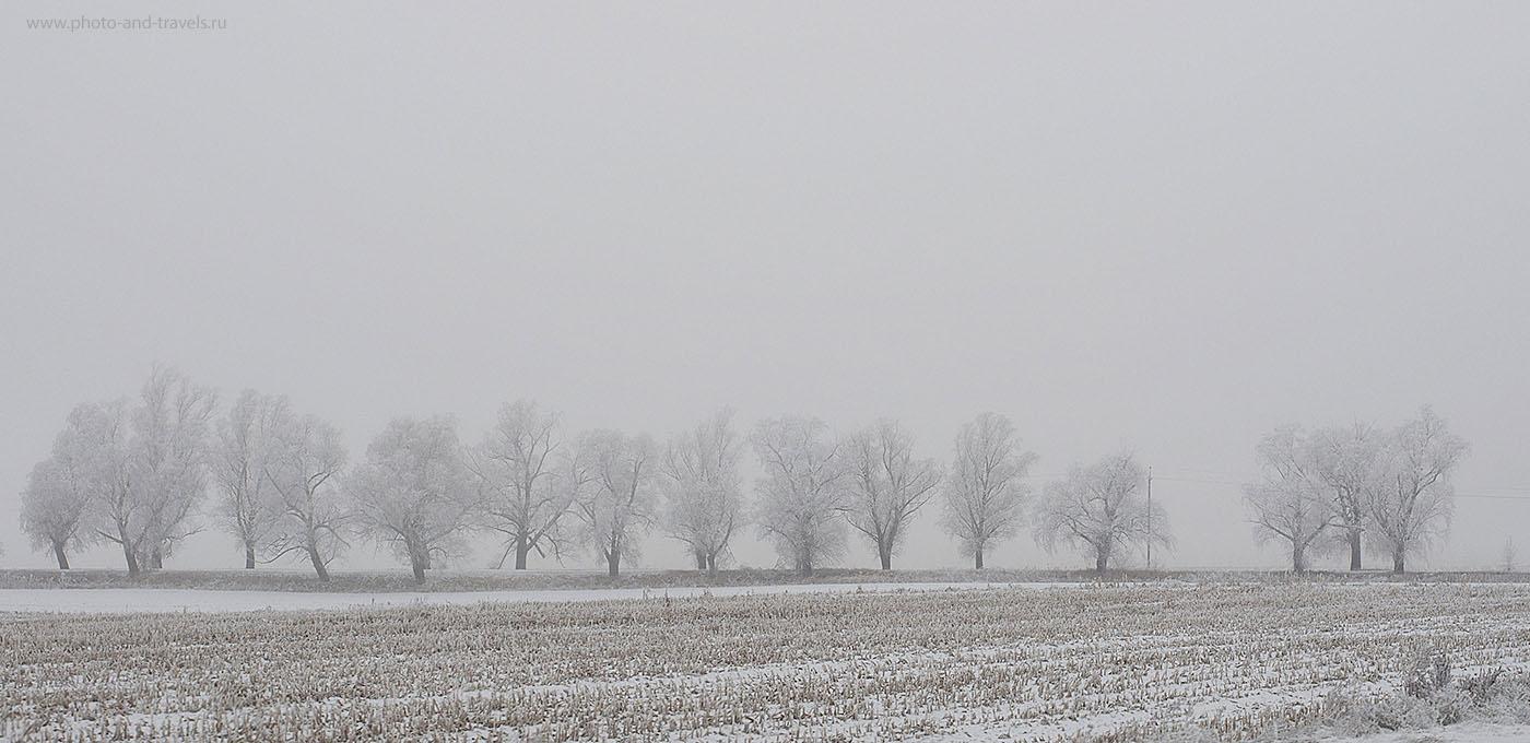 11. Зимний пейзаж (настройки: 1/500, режим приоритета диафрагмы «А», f/7.1, 250, 50 мм)