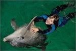Катя и дельфины