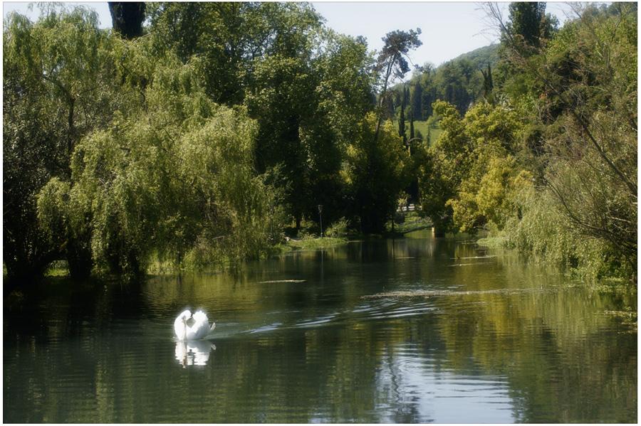 Фотографии пейзажей Абхазии. © Фотограф Кирилл Кузьмин