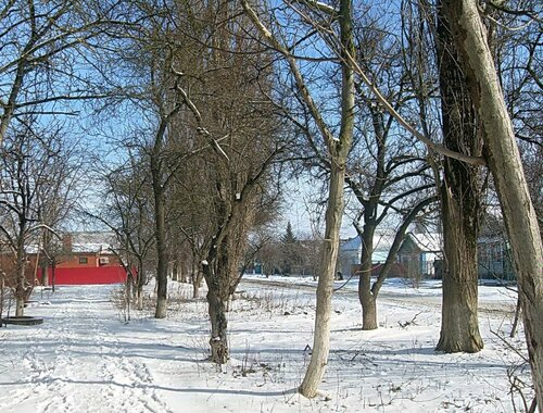 Мартовский снег (8)