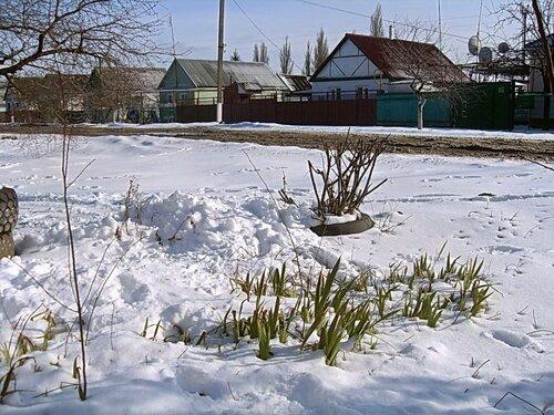 Мартовский снег (11)