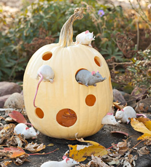 pumpkin-for-kids5.jpg