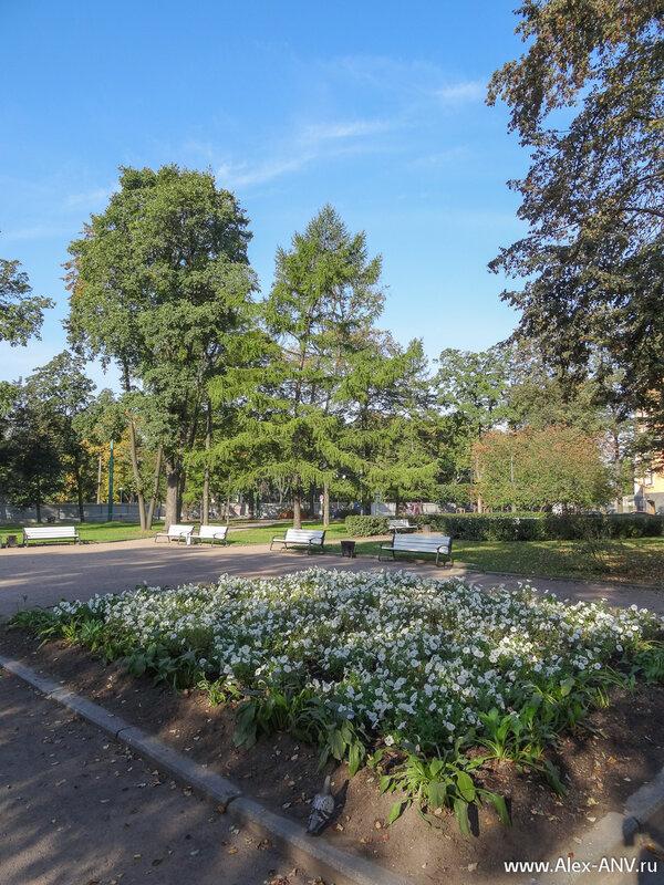 Сад вокруг Михайловского замка