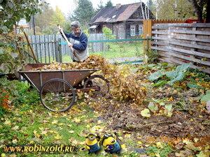 выгребание листьев