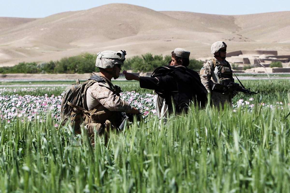 Посреди маковых полей Афганистана - фотографии военнослужащих корпуса морской пехоты США (28)