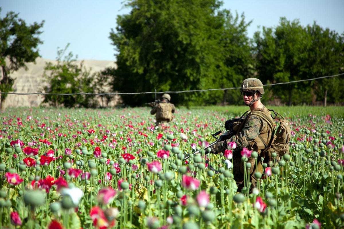 Посреди маковых полей Афганистана - фотографии военнослужащих корпуса морской пехоты США (29)