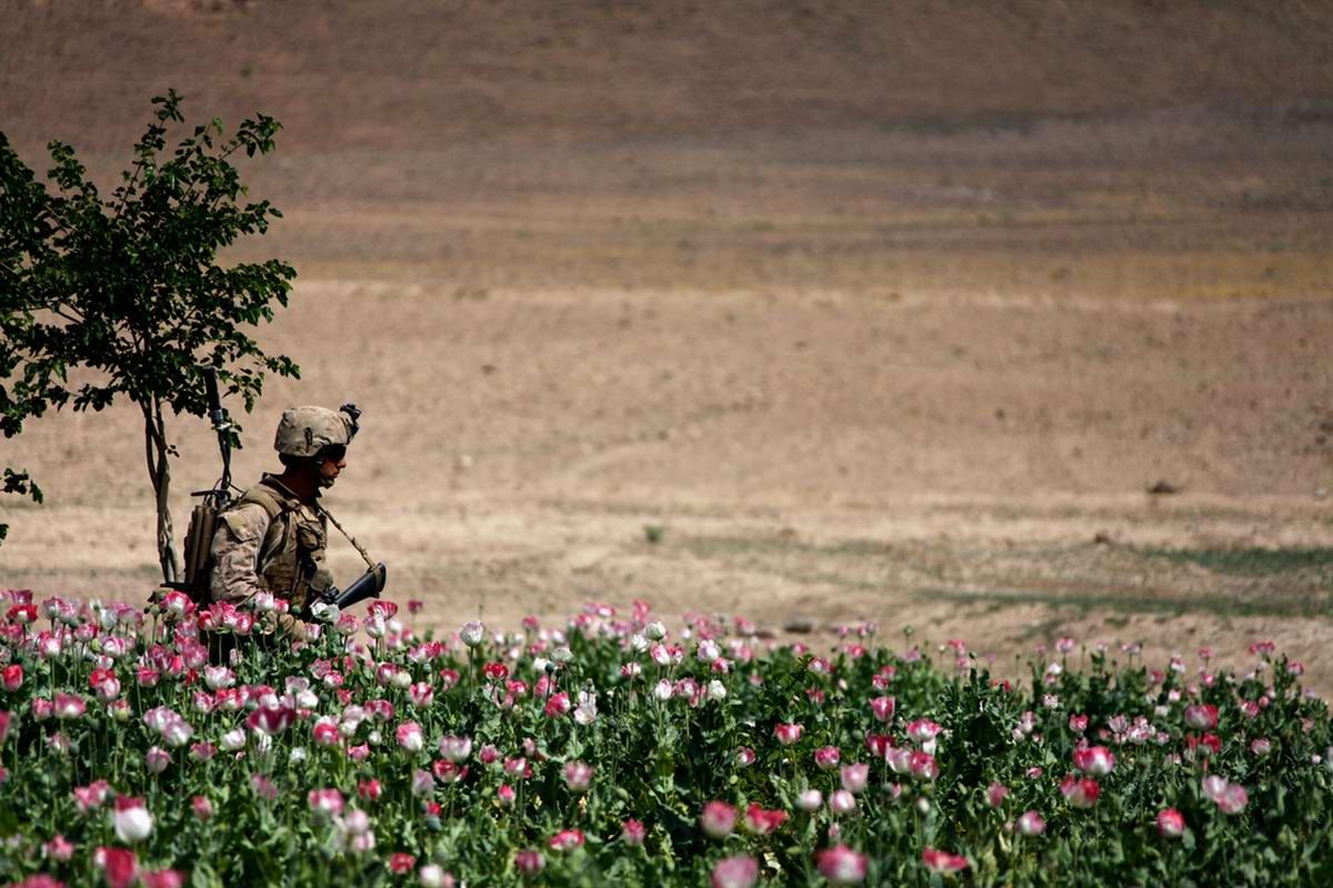 Посреди маковых полей Афганистана - фотографии военнослужащих корпуса морской пехоты США (31)