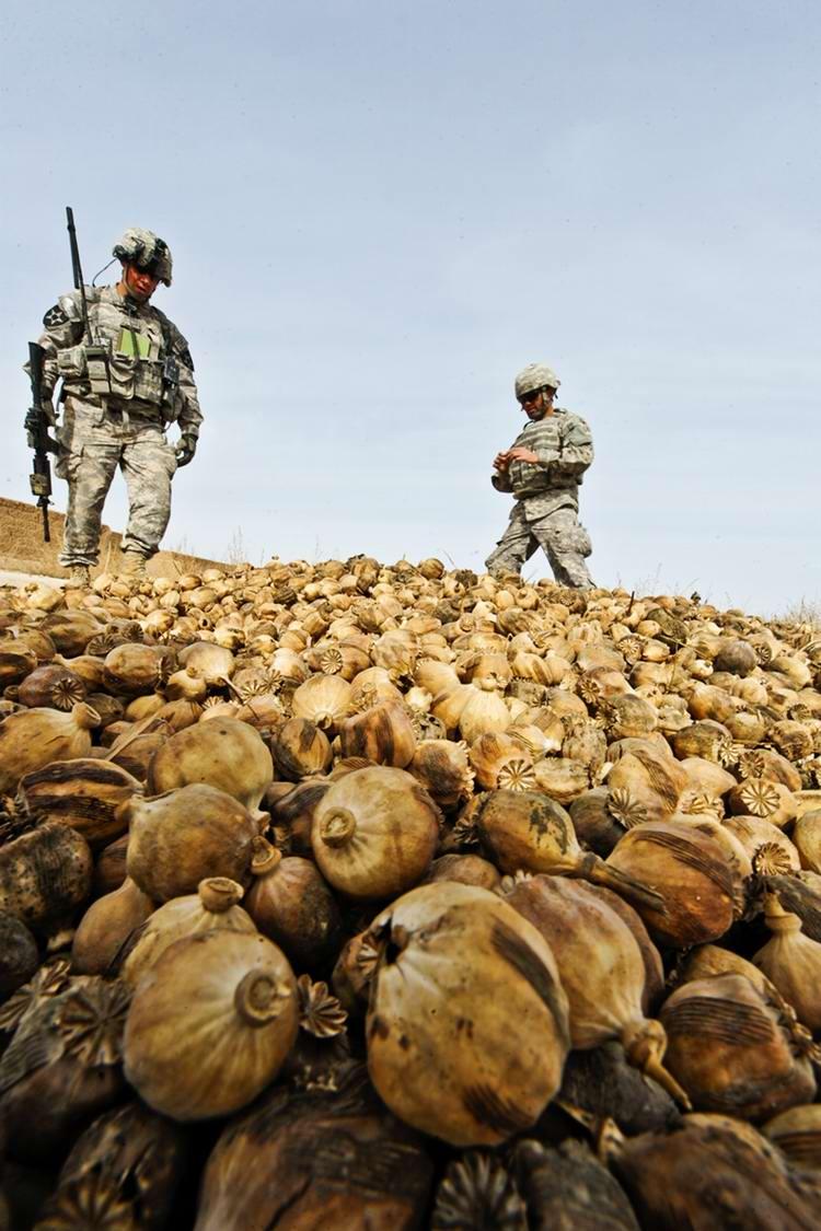 Посреди маковых полей Афганистана - фотографии военнослужащих корпуса морской пехоты США (39)