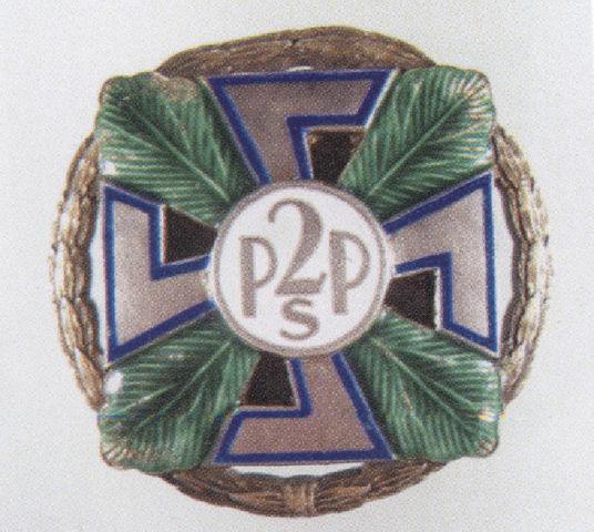 2PSP_odznaka.jpg