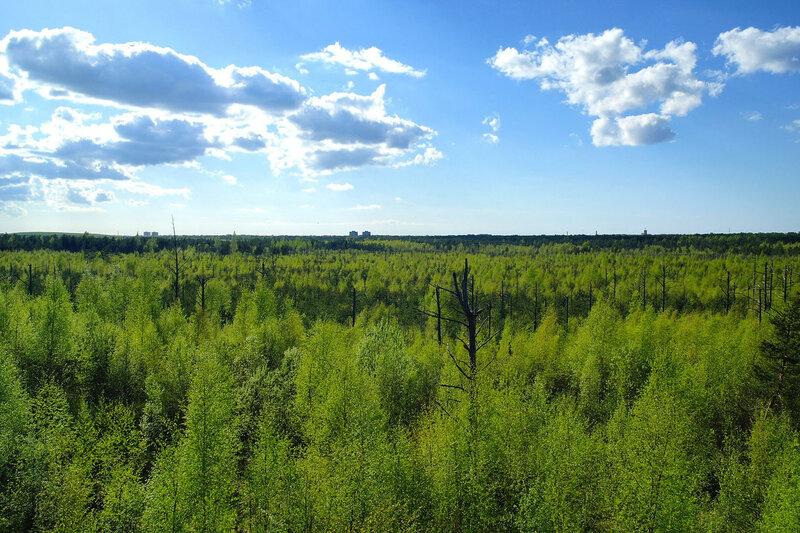 На горизонте Таллинн.