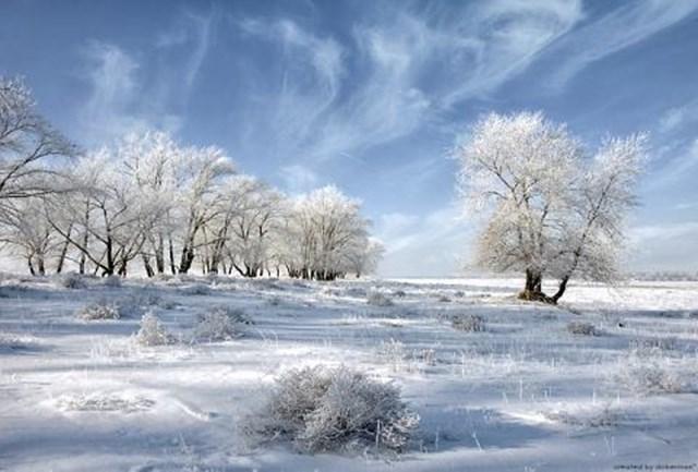 100 самых красивых зимних фотографии: пейзажи, звери и вообще 0 10f5ac 4d1c56d7 orig