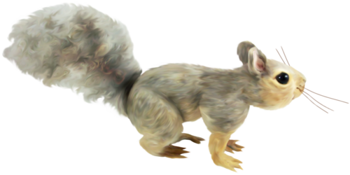 priss_flutteringleaves_squirrel2.png