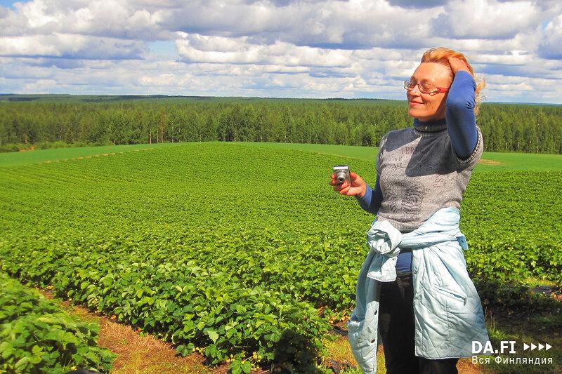 финляндия работа для украинца фото пока бегите