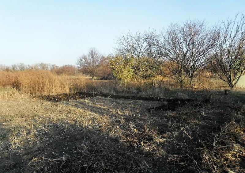 На земле, ноябрь 2012