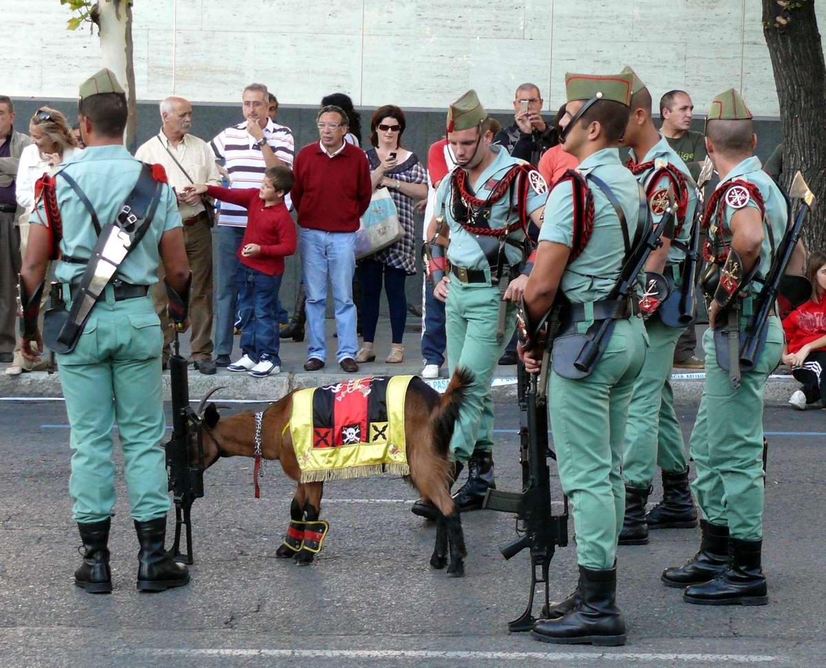 Про козла на веревочке и другие атрибуты Испанского легиона (4)