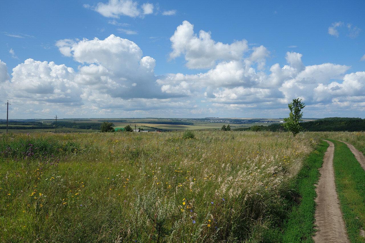 луга и поля Чувашии