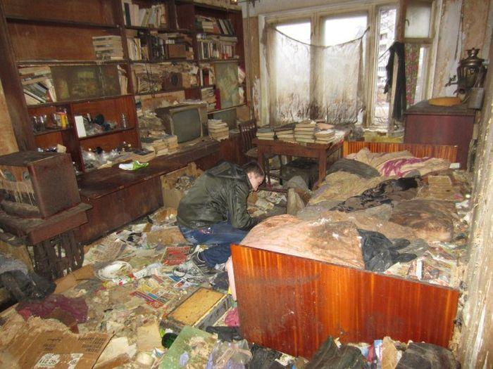 В захламленной квартире Петрозаводска жили более 20 кошек