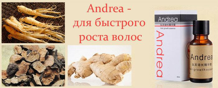 andrea_dlya_rosta_volos.jpg