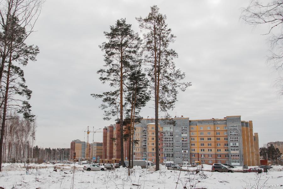 строительство кпп-4 в Сарове