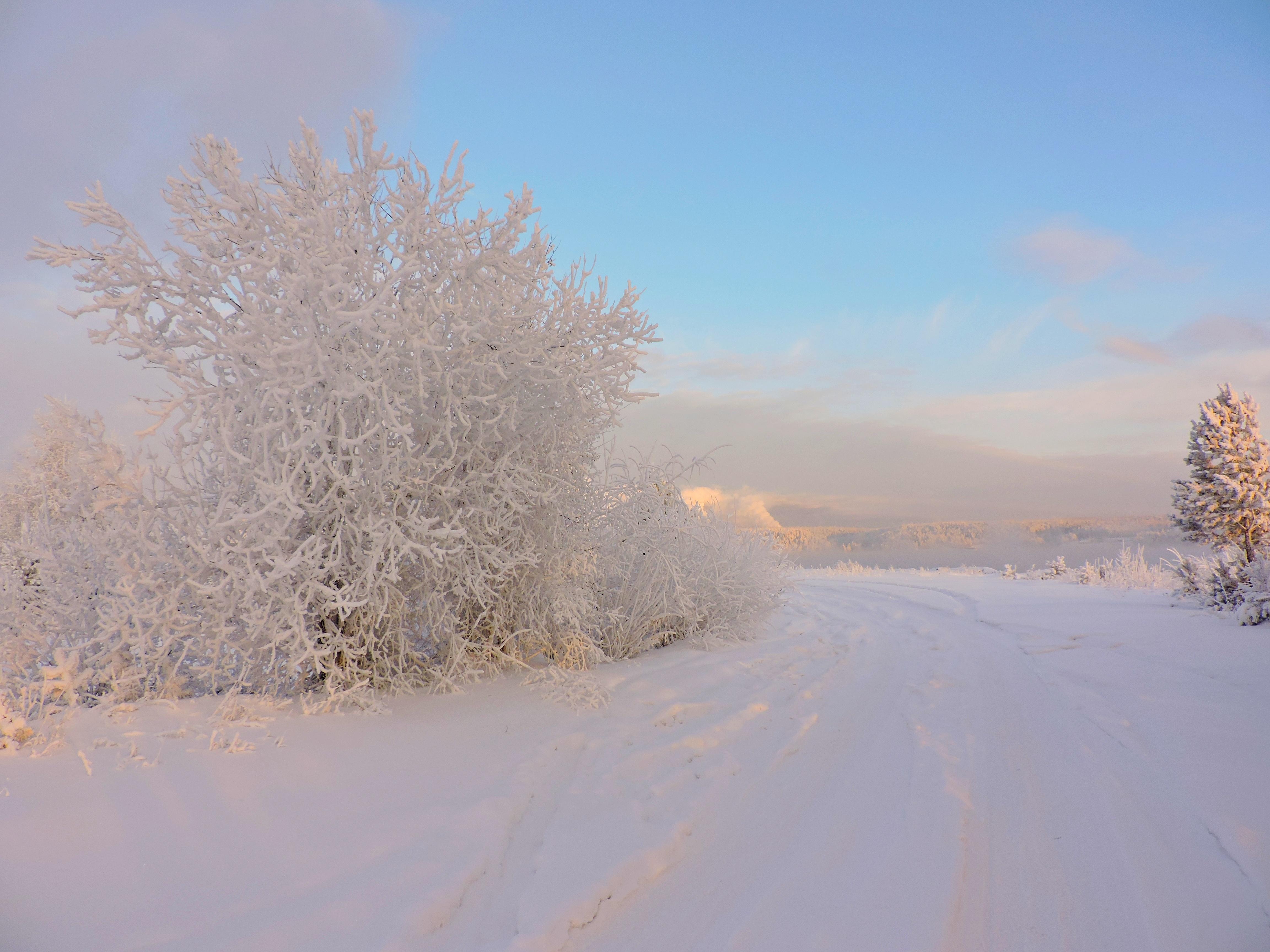Зимние узоры......