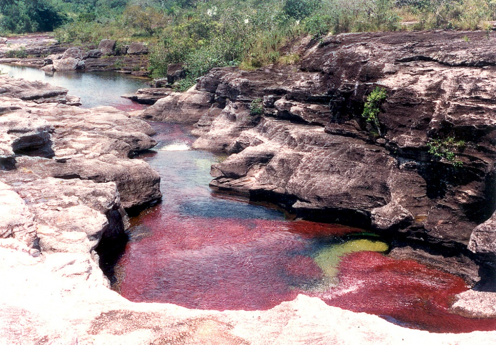 Нанесколько недель вгоду, впериод между сентябрем иноябрем, река Каньо-Кристалес превращается в