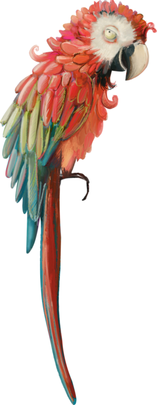 emeto_TheScaryPirates_parrot 1.png