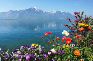 Ждем весну!