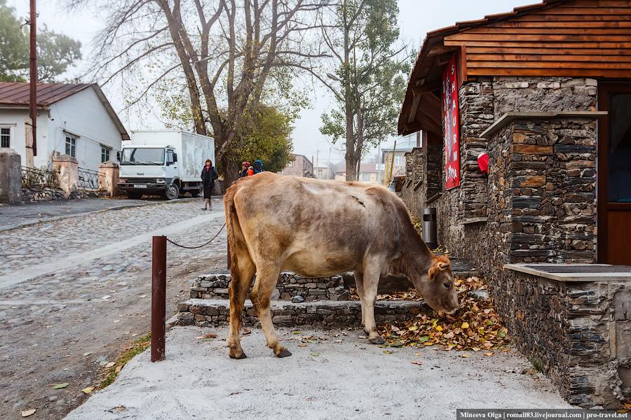 Степанцминда, Грузия