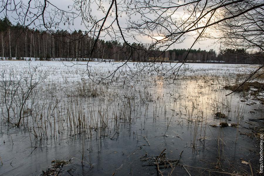 фотография варламовского озера в сарове