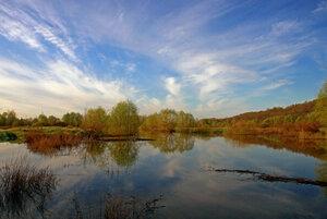 Половодье на реке Вороне